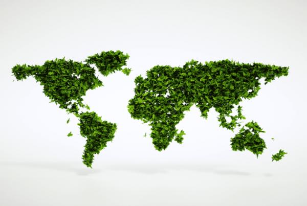 producción sustentable en Porta Hermanos